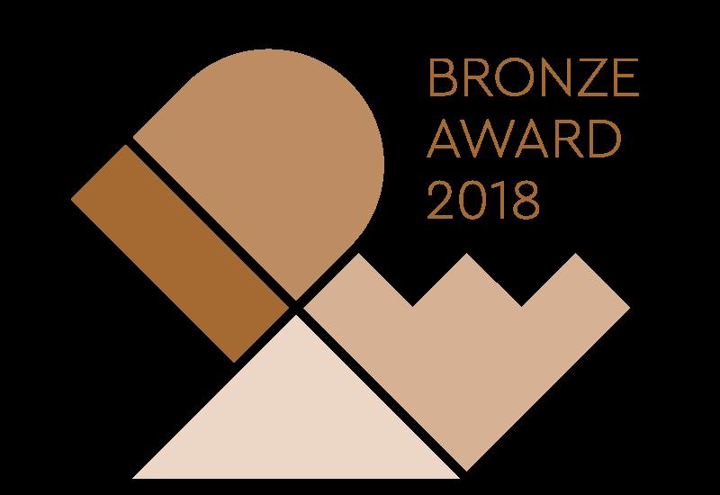 IDEA-2018-Bronze